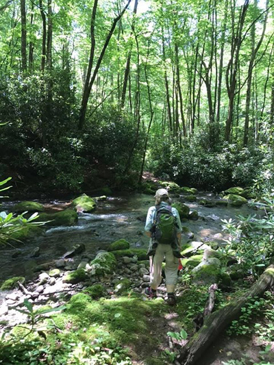 Little Sluice of Heaven: Creek Crossings and Crippling Critters