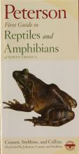 Peterson First Guides - Reptiles and Amphibians