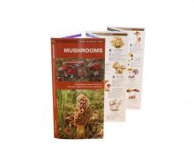 A Pocket Naturalist Guide - Mushrooms Guide