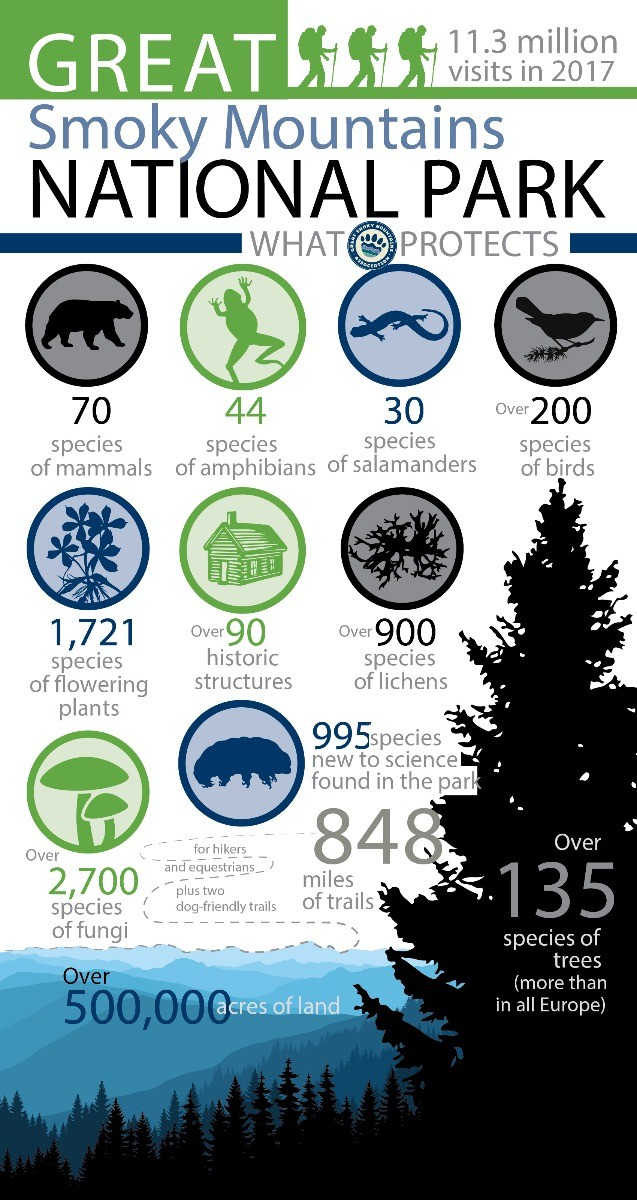 Aid to the Park Infographic Image